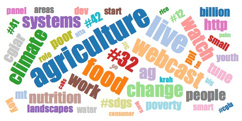 Most frequently used words from #CGIAR_DD tweets