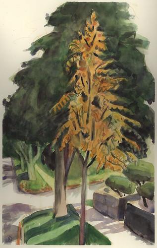 autumn trees watercolor urbanlandscape cedarfallsiowa marciamilnerbrage