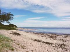 Walk near Århus