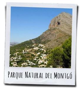 Het Natuurpark El Montgó, een gebergte tussen Denia en Javea aan de Costa Blanca
