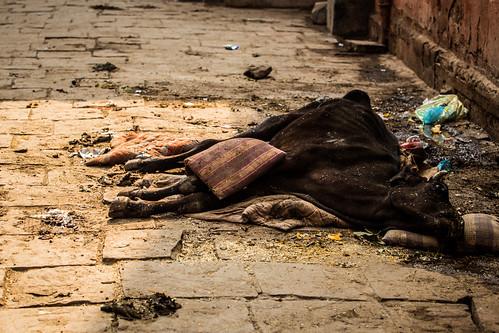 042 India Varanasi 130111 Jessica Wyld