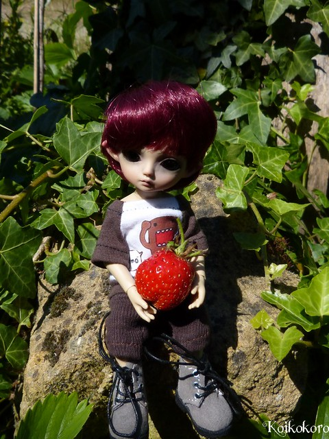 strawberry time !