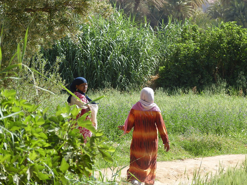 In the countryside of Morocco