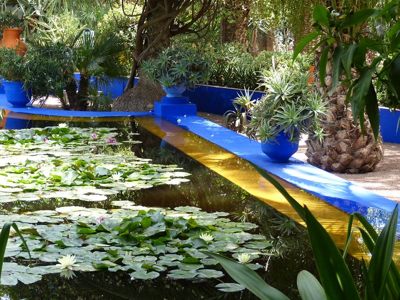 Jardin Majorelle pool, Marrakesh