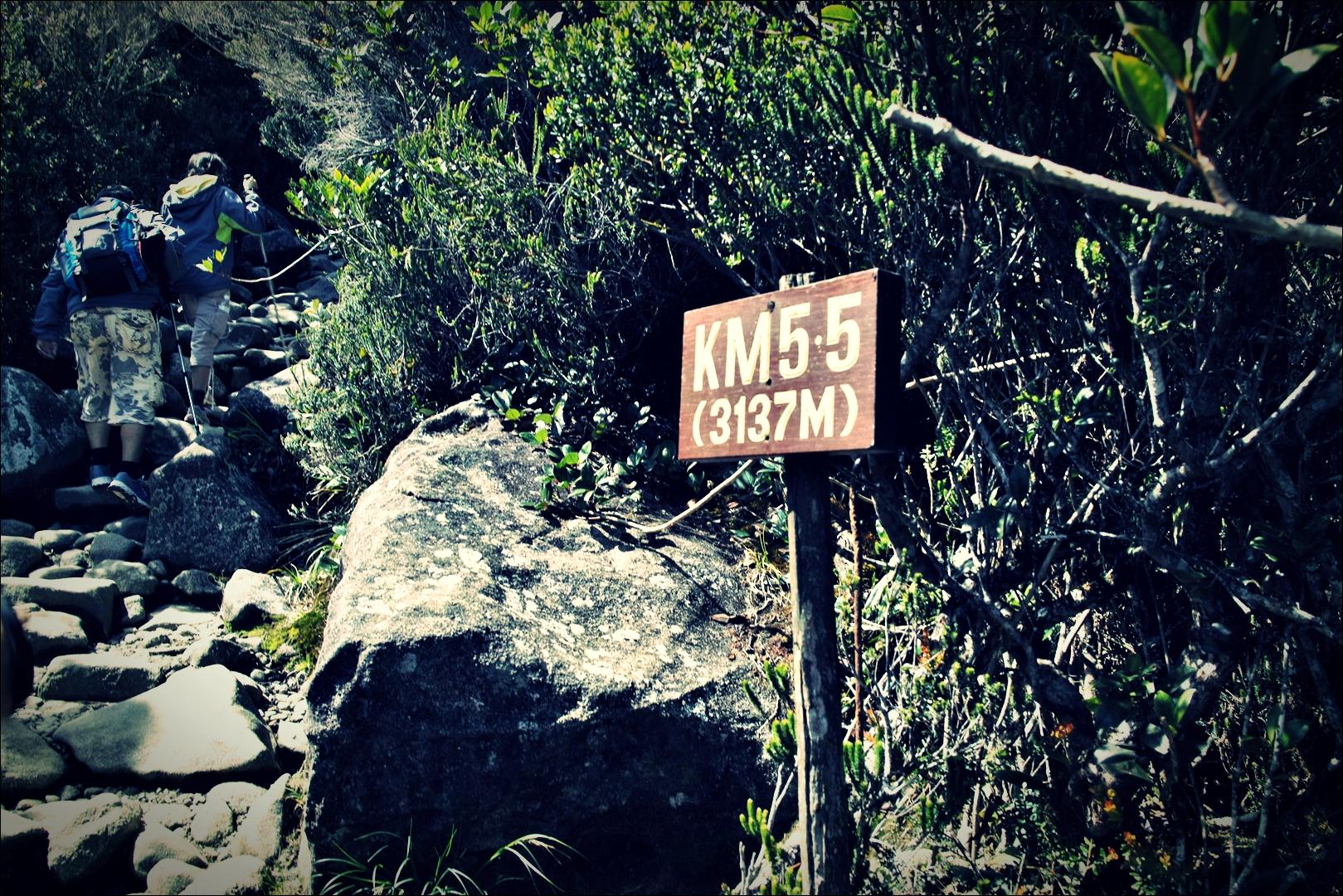고지를 향하여-'키나발루 산 등정 Climbing mount Kinabalu Low's peak the summit'