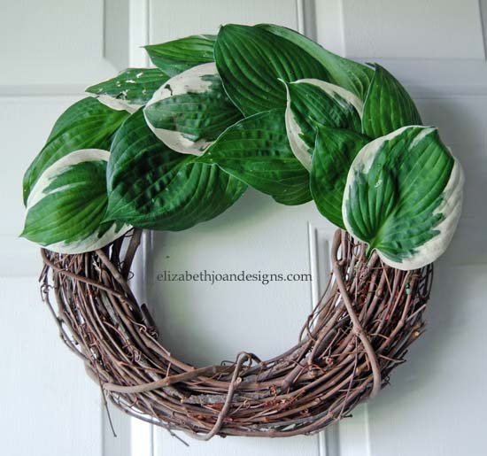 Hosta Wreath 5