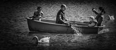 Row, Row, Row the boat....
