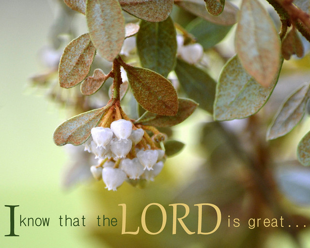 I know that the LORD is great