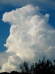 thunderHead1a