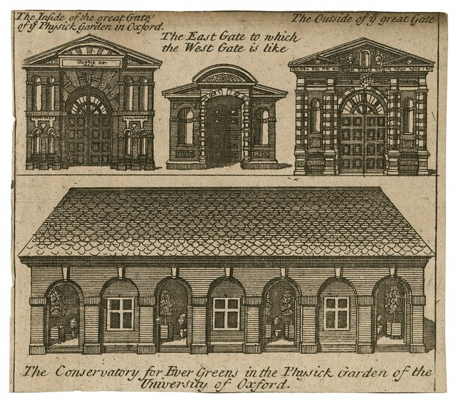 The Conservatory for Evergreens courtesy of Folger Shakespeare Library