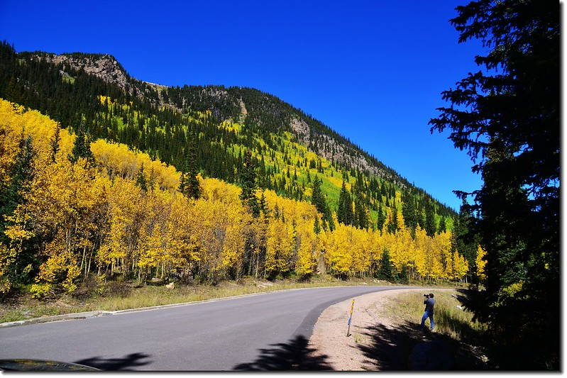 Guanella Pass in Fall, Colorado 1