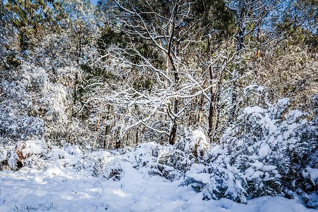 Mt Macedon Australia Property For Sale