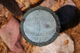 Forest Reserve Boundary Post No. 385
