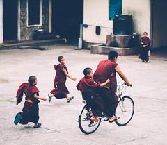 Playful Little Monks