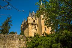 France - Dordogne - Saint-Léon-sur-Vézère - Château de Clérans