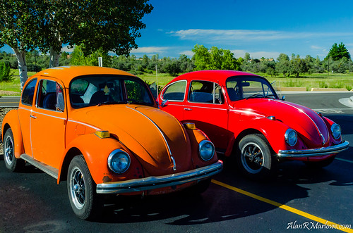 trees red summer arizona orange green art fall classic cars car yellow vw bug volkswagen landscape photography parkinglot automobile colorful fineart fine beetle az rubber tires canvas prints marlowe prescott vwbug vwbeetle erau embryriddleaeronauticaluniversity alanmarlowe alanrmarlowe