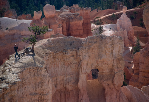 sandstone rock formations in Bryce Canyon National Park
