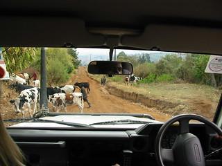 Traffic Jam in Tanzania