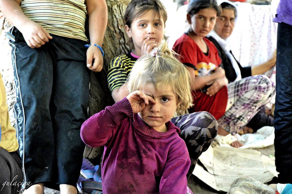 Zaroka Kurdê Êzidî