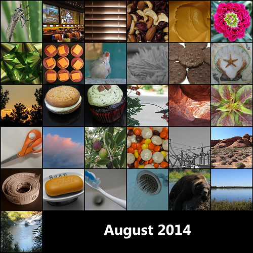 2014:365 August Mosaic