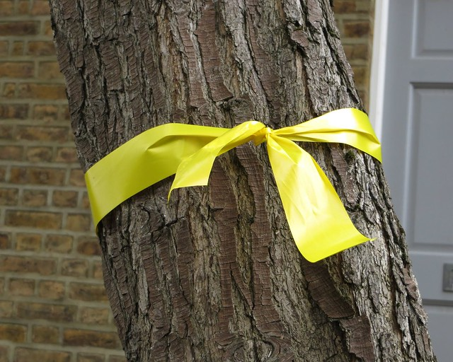 Yellow ribbon for Alice Gross