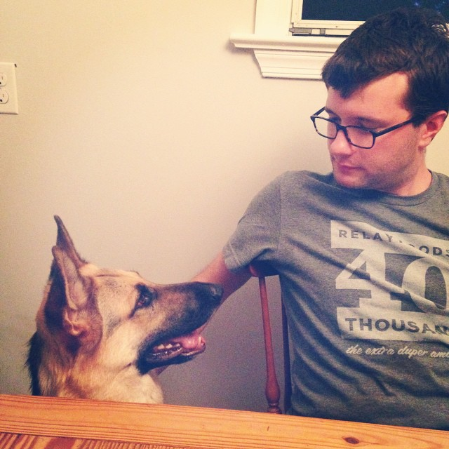 Inter-species communication #germanshepherd #doglife