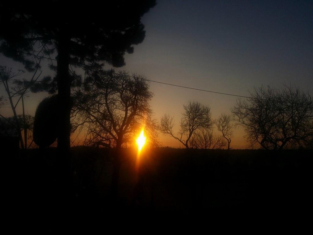 Guten Morgen An Alle Flickr Heidi Rothwinkler Flickr