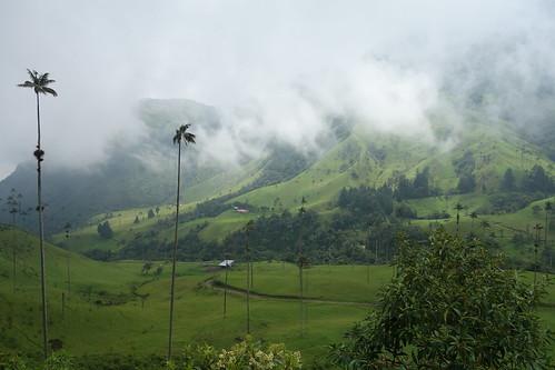 Vale de Cocora, Colômbia