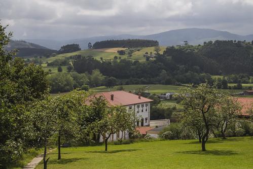 Finca de Valdecilla, Cantabria