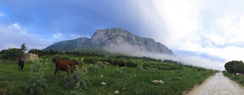 panorama sony natura panoramic sicily carlzeiss riserva montisicani parcodellaficuzza