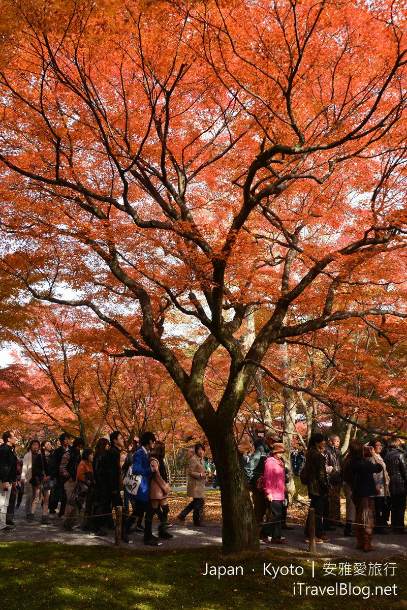 京都 东福寺59