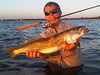 perfect-sarasota-fishing-trip-tips-bait-florida-3