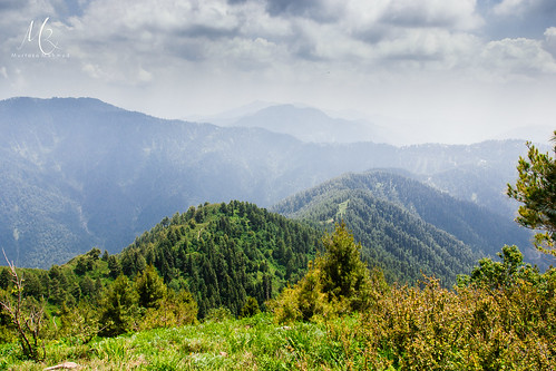 travel pakistan vacation mountains nature forest trekking canon nationalpark asia hiking backpacking southasia colorsofnature kpk dagribangla murtazamahmud inspiringtravel