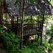 Bugtong Ball Falls
