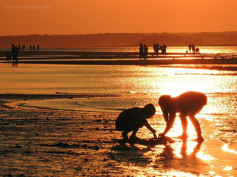 DSCN7972_Parlee_beach