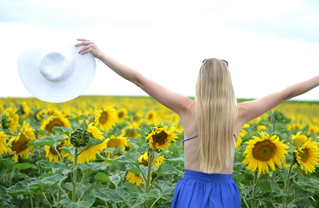 Outfit field with sunflowers (5)