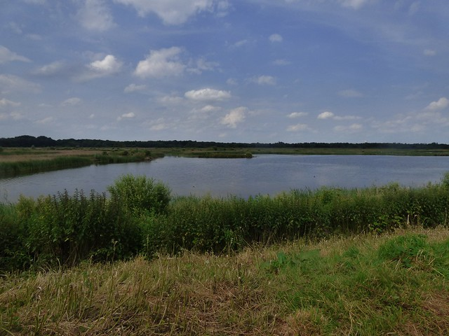 Potteric Carr Nature Reserve near Doncaster, Yorkshire, England - June 2014