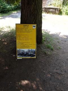 Image of Wolf's Lair near Gierłoż. hitler wolfsschanze gierłoż wolfslair trip20140717 deutschemilitärtechnik geo:lon=21500650 geo:lat=54079744