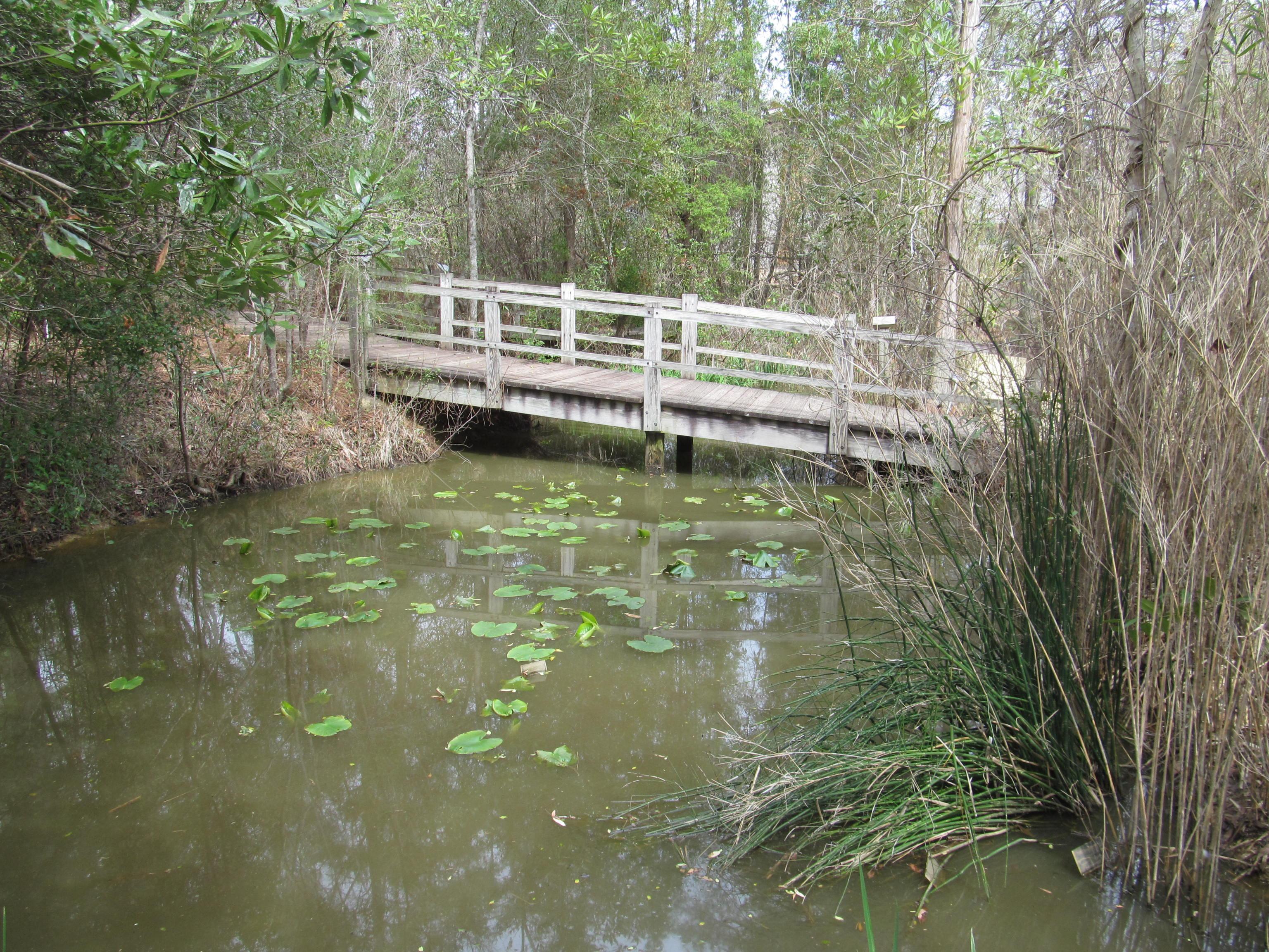 North Carolina Botanical Garden Chapel Hill North Carol Flickr Photo Sharing