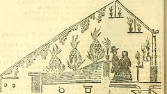 "Image from page 778 of ""The Gardeners' Chronicle and Agricultural Gazette"" (1850)"
