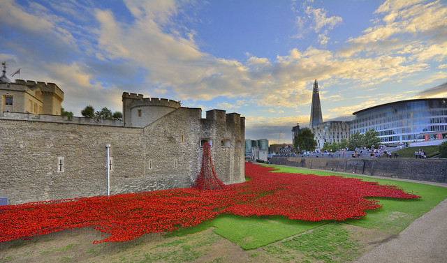Poppies At The Tower Of London 23-8-2014