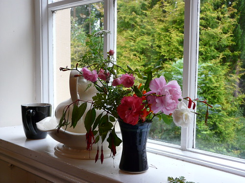 Flowers in a window, Tallow, County Waterford, Ireland   P1280747