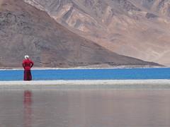 Monk-Pangong Tso-Ladakh-Jammu Kasmir-India