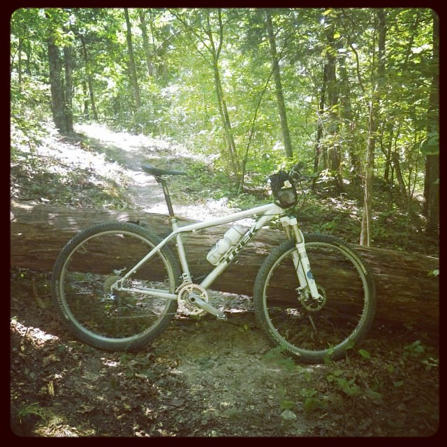 The big tree across the Ozark Trail lean. #lookatmybikeleaningagainststuff #mtb #bikes #ot100 #ozarktrail #missouri