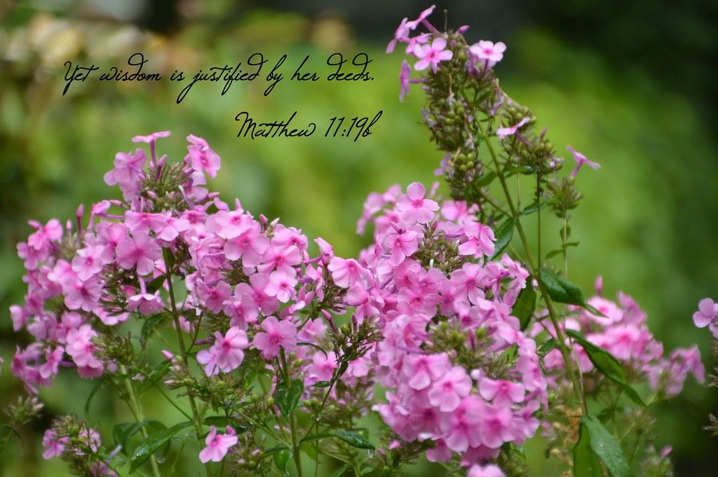 Matthew 11:19b