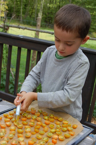 Will drizzling olive oil over the sungold tomatoes by Eve Fox, copyright 2014