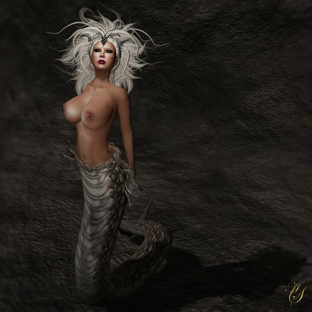Addison 'Medusa'_103a