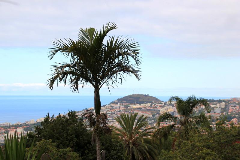 Madeira, Funchal 2014 + ostokset 1085