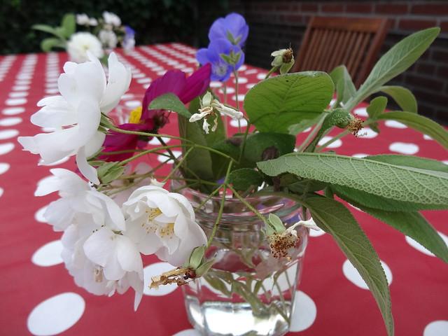 Garden flowers and sage