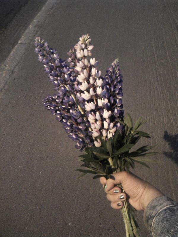 flowerpower02